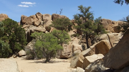 Desert Queen Mine, Snake Wash