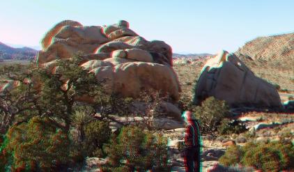Joshua Tree NP Favorites 6 3DA 1080p DSCF1209