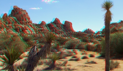 Joshua Tree NP Favorites 6 3DA 1080p DSCF2614