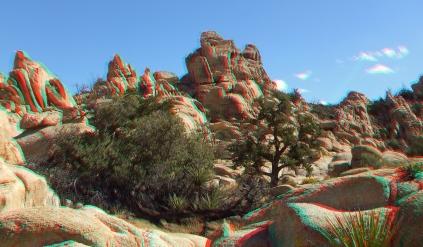 Joshua Tree NP Favorites 6 3DA 1080p DSCF2643
