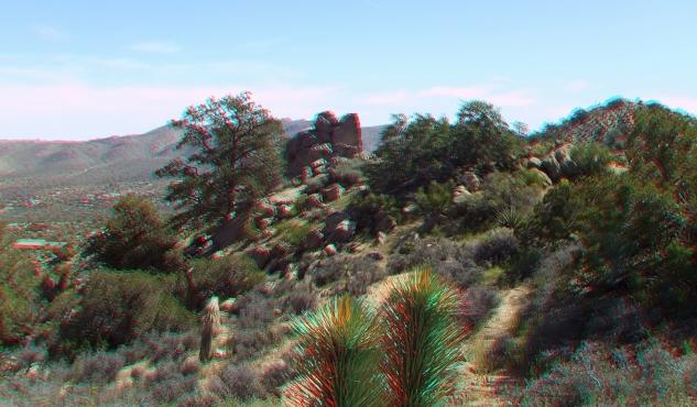 Joshua Tree NP Favorites 6 3DA 1080p DSCF3656