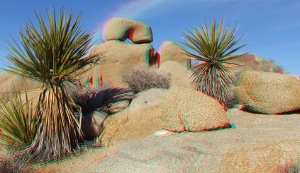 Joshua Tree NP Favorites 6 3DA 1080p DSCF5324