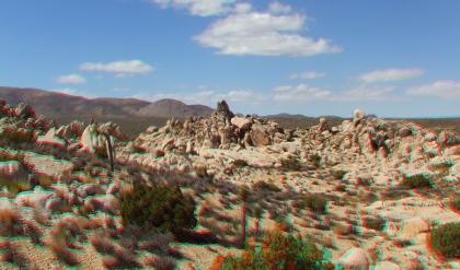 Joshua Tree NP Favorites 6 3DA 1080p DSCF5616