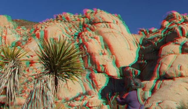 Joshua Tree NP Favorites 6 3DA 1080p DSCF5844