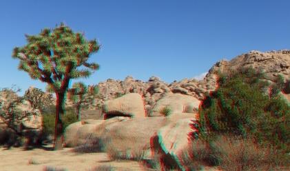 Joshua Tree NP Favorites 7 3DA 1080p DSCF1388