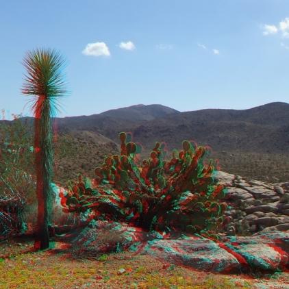 Joshua Tree NP Favorites 7 3DA 1080p DSCF6495
