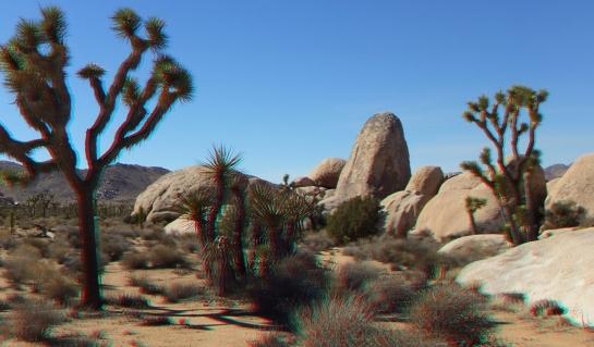 Joshua Tree NP Favorites 7 3DA 1080p DSCF7242