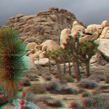 Joshua Tree NP Favorites 7 3DA 1080p DSCF7668