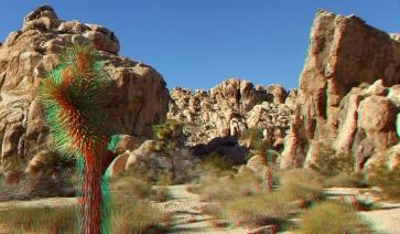 Joshua Tree NP Favorites 7 3DA 1080p DSCF9647