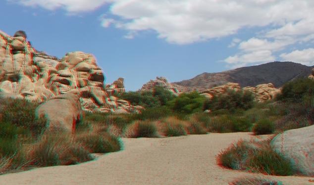 Joshua Tree NP Favorites 10 3DA 1080p DSCF0112