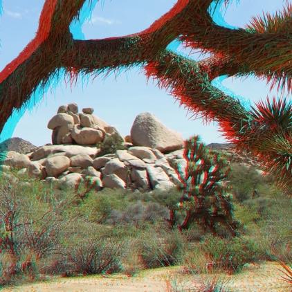 Joshua Tree NP Favorites 10 3DA 1080p DSCF5746