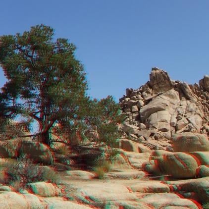Joshua Tree NP Favorites 10 3DA 1080p DSCF9211