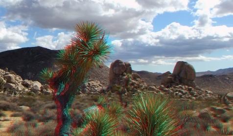 Joshua Tree NP Favorites 9 3DA 1080p DSCF1794